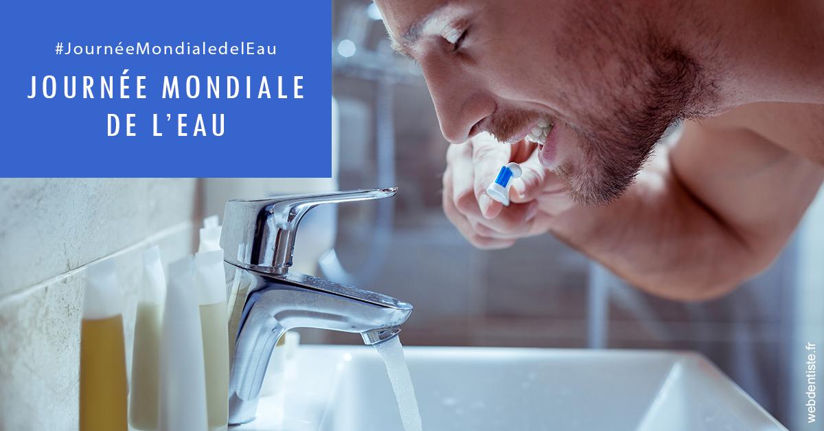 https://dr-bounet-philippe.chirurgiens-dentistes.fr/Journée de l'eau 2