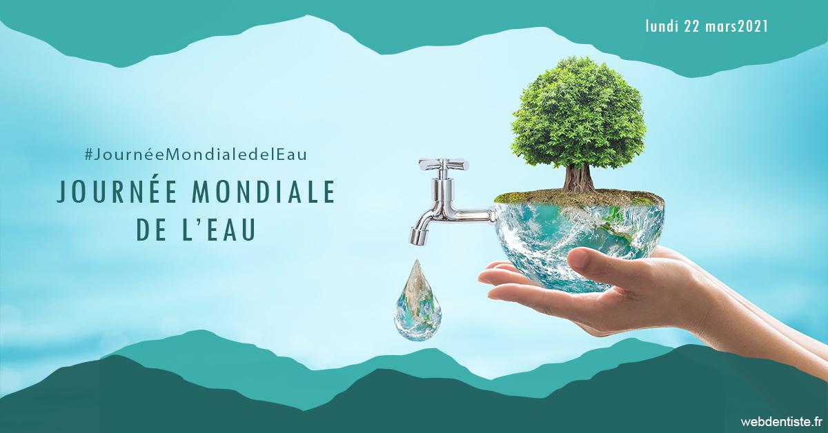 https://dr-bounet-philippe.chirurgiens-dentistes.fr/Journée de l'eau 1